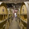 Les foudres domaine Le Puy naturedevin.com vin bio