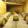 La cave d'élevage domaine des Orchis naturedevin.com vin bio