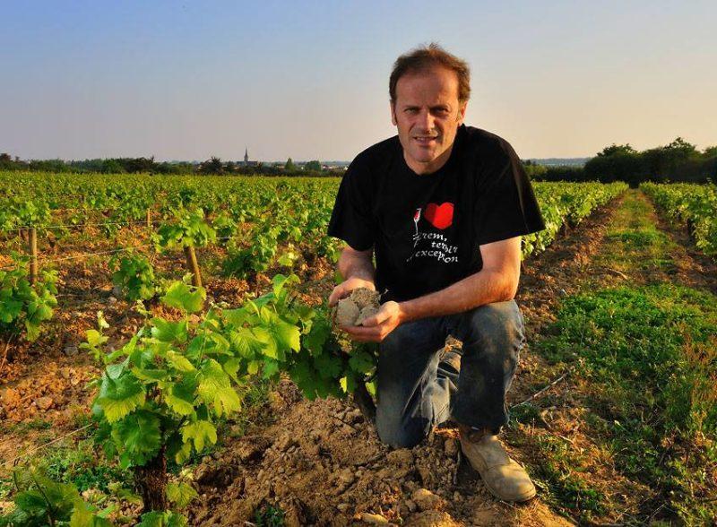 Thierry Michon dans ses vignes domaine Saint Nicolas naturedevin.com vin bio