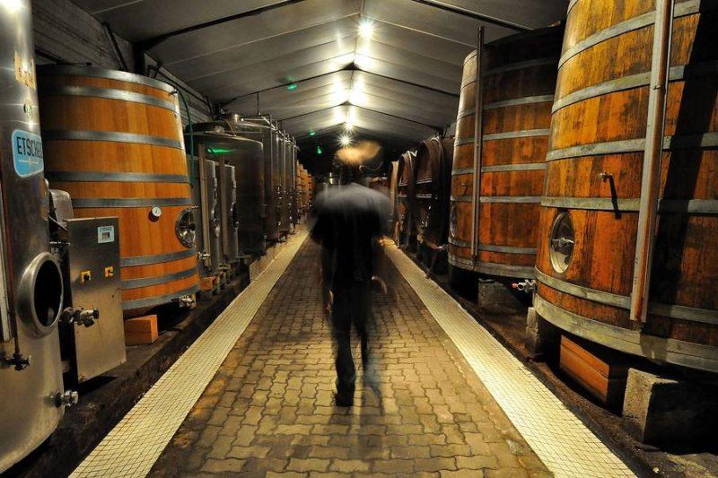 La cave les foudres domaine Saint Nicolas naturedevin.com vin bio
