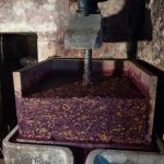 Le pressoir domaine Chatillon Jura naturedevin.com vin bio