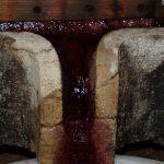 domaine Chatillon Jura naturedevin.com vin bio