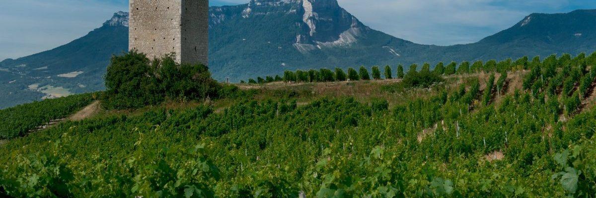 Le Granier vu des Tours de Chignin Savoie naturedevin.com vin bio