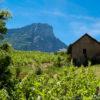 Sous le Granier en Savoie Les vignes en coteaux naturedevin.com vin bio