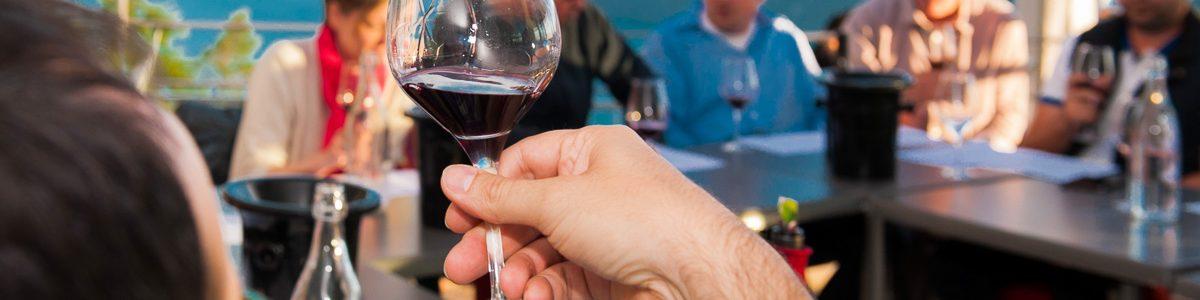 ateliers dégustation naturedevin.com vente de vin bio