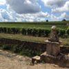 Bourgogne Clos de la Perrière Monopole 2016, Clos du Moulin aux Moines naturedevin.com